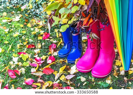 Autumn. Two pairs of rubber boots and colorful umbrella with autumnal leaves. Pair of pink (adult) and blue (child) rainboots. Protection in the rain. Copy space. Activity, leisure, travel concept. - stock photo