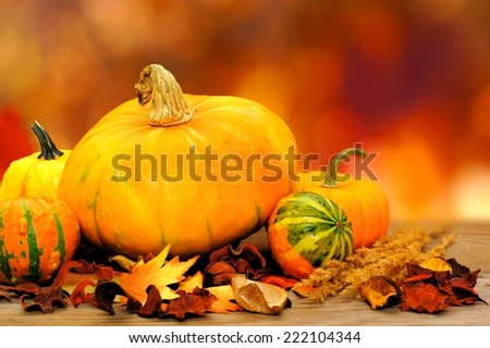 Autumn vegetables on wood with abstract fall leaves background                      - stock photo
