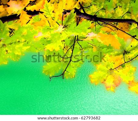 Autumn view - stock photo