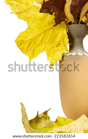 Autumn view. Jug with fallen leaves. Isolated on white background. - stock photo