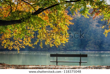autumn view of lake , trees and bench - stock photo