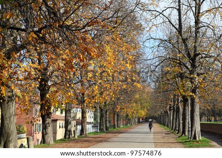 autumn walk in Lucca, Italy