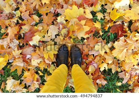 Autumn wallpaper. Legs in yellow pants and black shoes on the ground covered with red and yellow maple leaves. Look down.