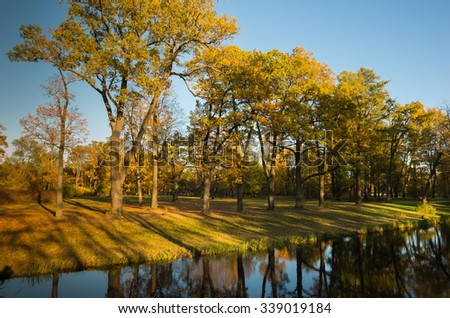 Autumn water landscape with bright colorful yellow leaves in Saint-Petersburg region, Russia.