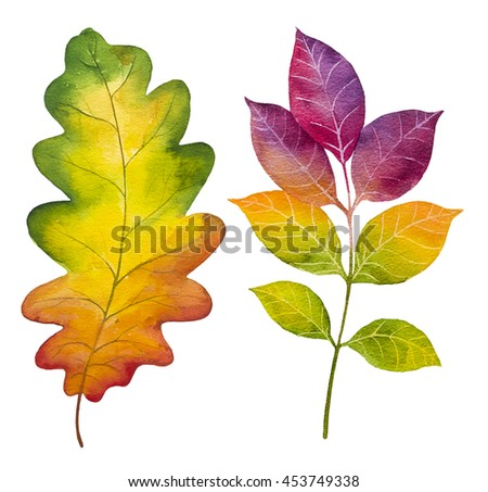 Autumn watercolor leaves. Fall illustrations. - stock photo