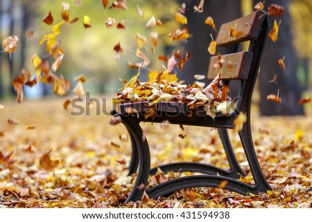 Autumn wind in the park - stock photo
