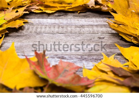 Autumn wooden natural background with maple yellow leaves, empty space for text - stock photo