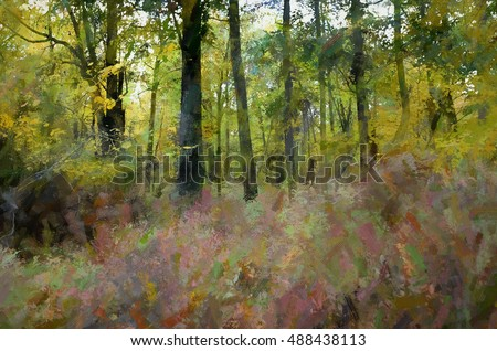Autumn woods scene in the Poconos of Pennsylvania transformed into a colorful digital painting