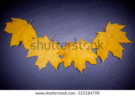 Autumn yellow leaves on a stone background