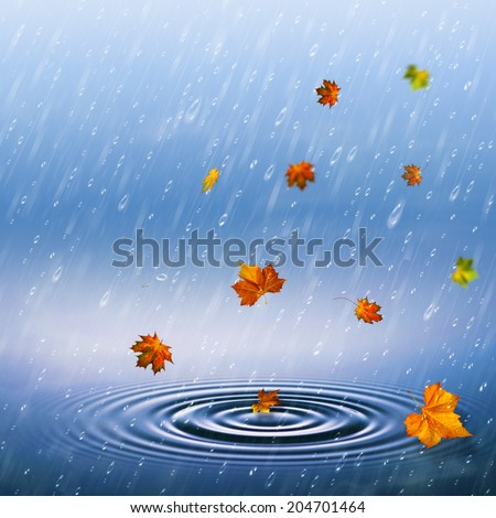 autumnal backrounds with fallen foliage and rain drops - stock photo