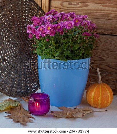 Autumnal design windows with a candle, fallen leaves and flowering chrysanthemums bush in a pot - stock photo