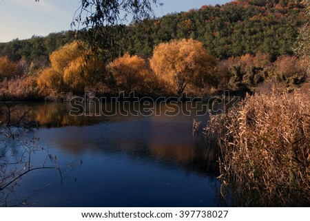 Autumnal foliage over a backwater.  Autumn and Lake. Sevastopol.