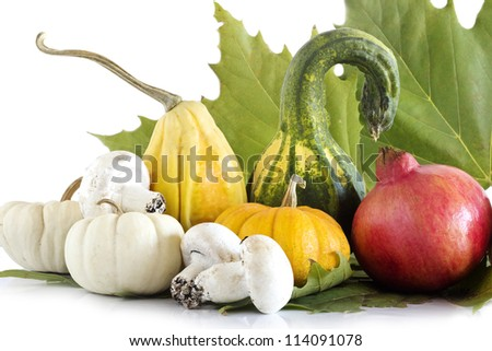 autumnal food selection