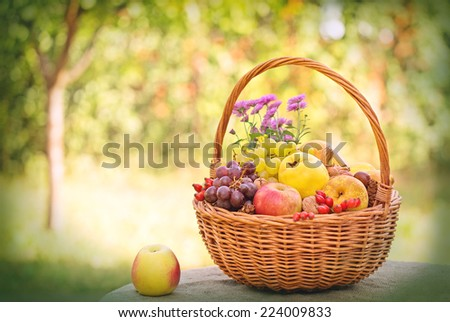 Autumnal fruits in wicker basket