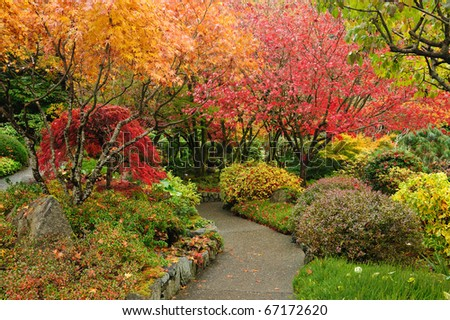 autumnal japanese garden in victoria, vancouver island, british columbia, canada - stock photo