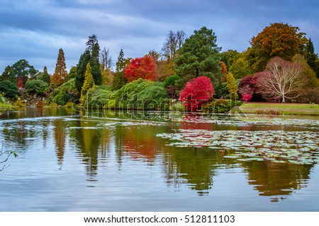 Autumnal landscape of trees reflected on water.Picture taken on Sheffield Park Garden