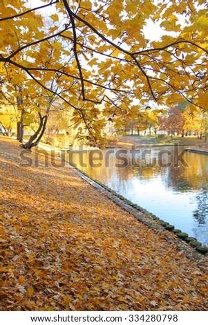 Autumnal park in Riga, Latvia - stock photo