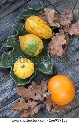 Autumnal pumpkins, harvest - stock photo
