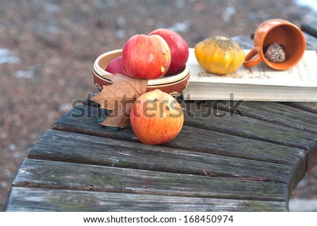 autumnal still life on the old wood bench - stock photo