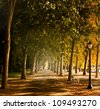 Avenue from Hungary ,Balatonf�¼red,promenade with a bench - stock photo