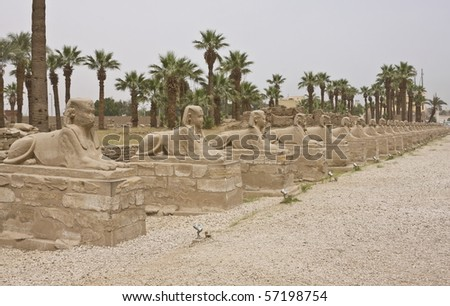 Avenue of Sphinxes, Luxor temple, Egypt - stock photo