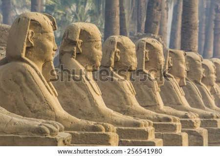 Avenue of the Sphinxes, Luxor Temple, Egypt - stock photo