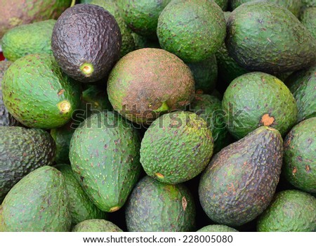 Avocado background. Fresh green avocado on a market . Food background - stock photo