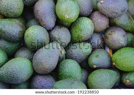 Avocados a lot - stock photo