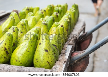 Avocados arranged in cart for sale at Sunday free market in Santa Clara, Cuba. The Cuban government reforms permit private individuals for self-employment or to operate small private businesses.