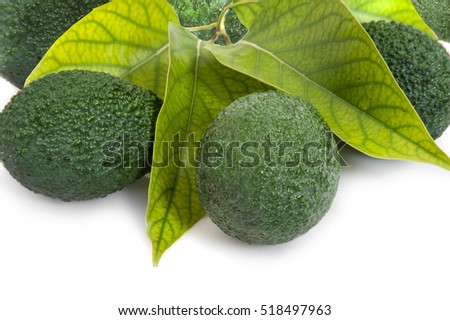 avocados with leaves on white background