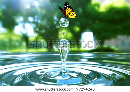 Awesome water drop moment in park with beautiful butterfly - stock photo