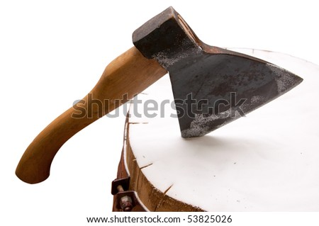 Axe for meat will thrust in a stub with salt