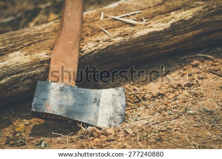 axe for woodworking with vintage style - stock photo