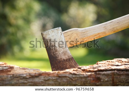 Axe in wood - stock photo