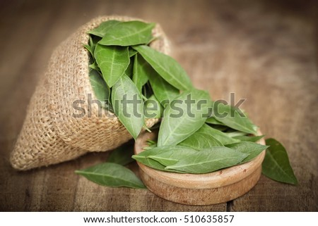 Ayurvedic henna leaves on wooden surface