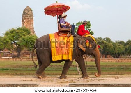 AYUTTHAYA - DECEMBER 14, 2014:Elephant is walking at a scenic route taken during a visit to the historic site and behind the praram Temple on december 14,2014, Ayutthaya, Thailand. - stock photo