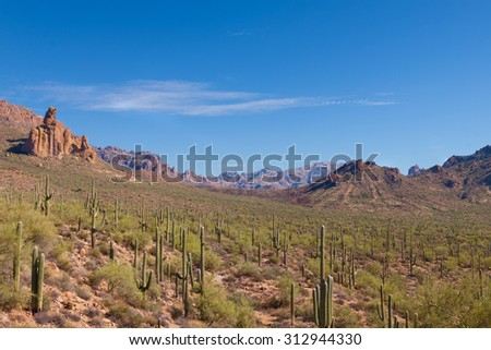 AZ- West Superstition Mountain Wilderness-Dutchman Trail. Along this beautiful trail, we were fortunate enough to see a green mohave snake (which we did not approach). - stock photo