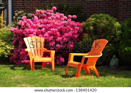 Azalea flowers in Spring garden of Maryland, USA - stock photo