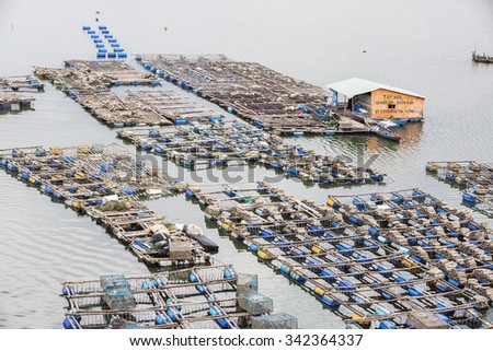 BA RIA, VIETNAM - AUG 22, 2015: Float fishing village, Long Son, Long Hai, Ba Ria- Vung Tau Vietnam. People living and doing feed fish industry at floating village.