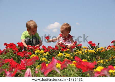 baby and child in flowers - stock photo