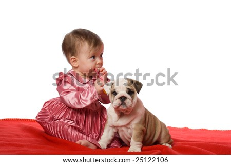Baby and puppy of english bulldog on red blancket isolated on white