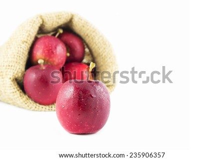 Baby apples on white background
