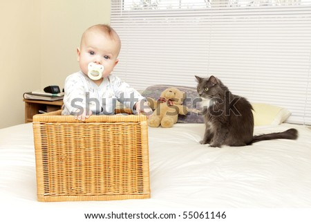 Baby boy at home in wicker basket on parents' bed, with cat