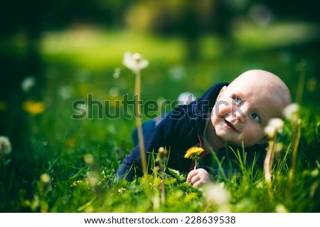 Baby boy crawling in the grass - stock photo