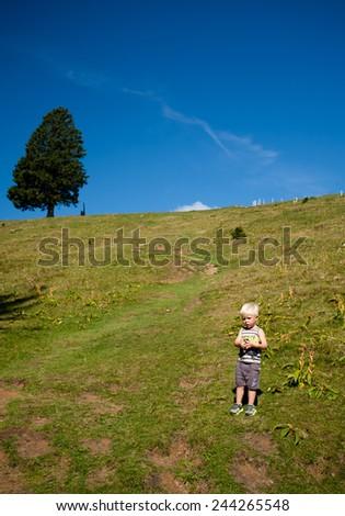 baby boy hiking in mountain on green pastures, slovenia - stock photo