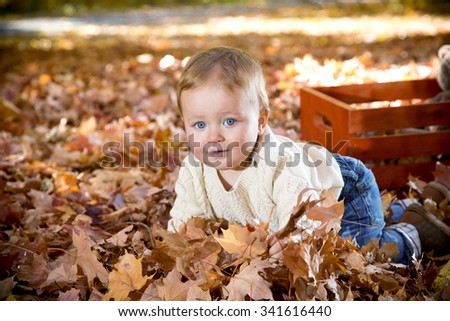 Baby boy in fall leaves  - stock photo