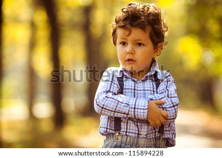 baby boy in the autumn  park - stock photo