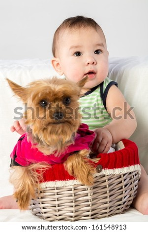 Baby boy with a puppy in a wicker basket in studio