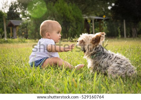 baby child and yorkshire terrier outdoors