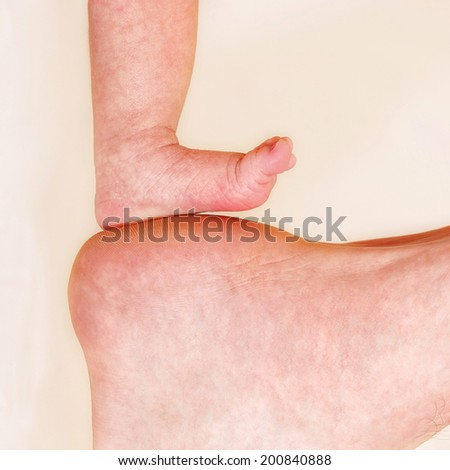 Baby Feet and Dads  - stock photo